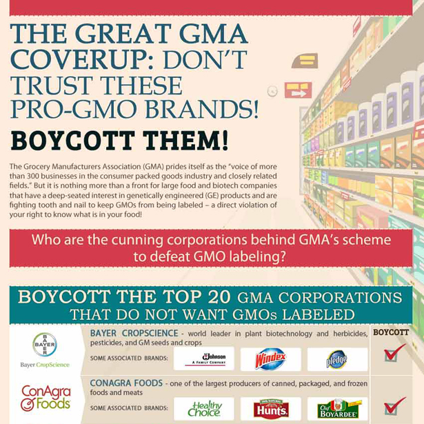 The Boycott List Infographic